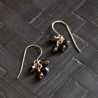 lucky in bronze earrings