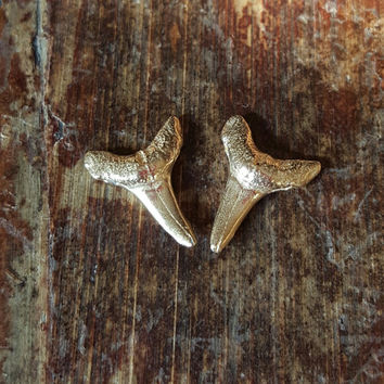 14K Gold Earrings Shark Tooth Studs 14K Gold Stud Earrings Shark Tooth Womens Jewelry Solid Gold Studs Boho Earrings Boho Jewelry Women Gift
