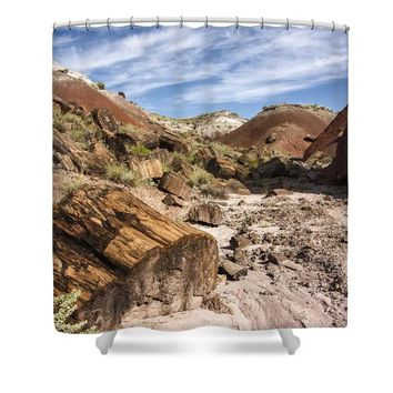 Petrified Wood in the Painted Desert Shower Curtain for Sale by Melany Sarafis