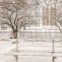 Paris Notre Dame Park Bench Fine Art Photography Print