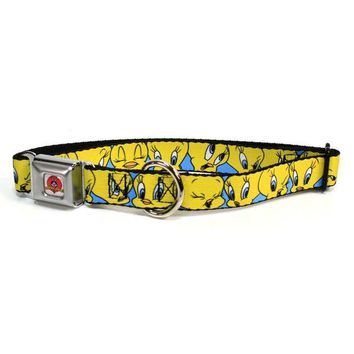 DCCKJY1 Looney Tunes - Tweety Bird Expressions Dog Collar