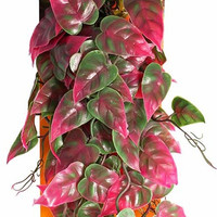 Reptology Hangining Vine Green and Red   Artificial Plant   Pangea Reptile