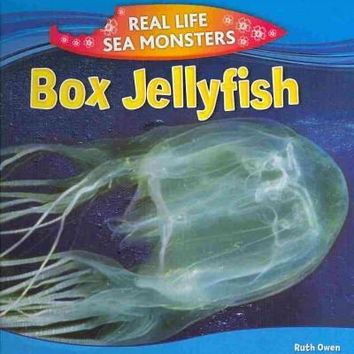 Box Jellyfish (Real Life Sea Monsters)