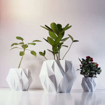Polygon Plant Pot, 3D Printed Geometric Pots Modern Art, Plastic Indoor Planter, Math Inspired Contemporary Decor, EleMental 5 inch