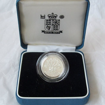 1991 UK Silver Proof One Pound Coin COA & box Royal Mint