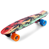 Colormix CL-24 22 inch Skate Board Single Rocker Men Graffiti Maple Leaf Retro Skateboard Longboard Mini Cruiser