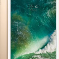 Apple 12.9-inch iPad Pro with cellular and wifi 512GB gold