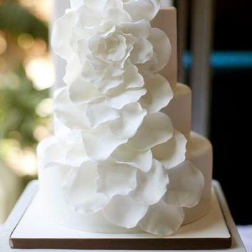 Wedding Girl / petals of pure White yum yums.