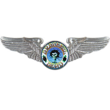 Grateful Dead - Skull and Roses Large Pilot Pin