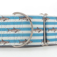 Tiny Sharks and Stripes Dog Collar (Martingale, Buckle or Tag)