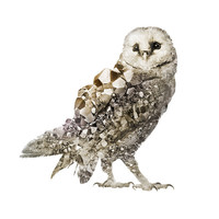 Crystal Pyrite Owl Signed Print   Art   Photograph   Double Exposure