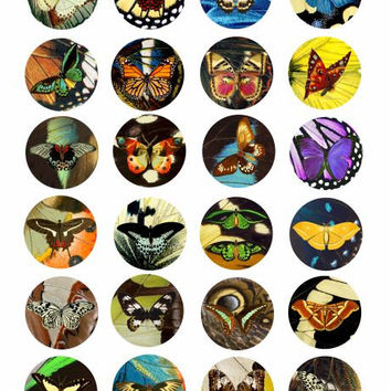 butterflies on butterfly wing patterns clip art collage sheet 1.5 INCH circles for pendants pins magnets scrapbooking crafts