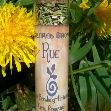 Rue Witchcraft Herb Loose Herb Botanicals Pagan Wiccan Spells Cunning Craft
