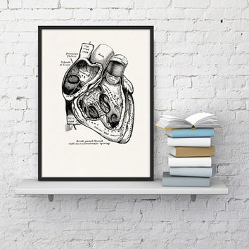 Wall art print Human Heart in black- Science prints A4 wall art- Anatomy prints wall decor. Heart art, Gift, Love gift, giclee art WSK02