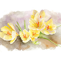 Yellow Crocuses Watercolor Painting - Spring Flowers, Garden - Archival Print of Watercolour