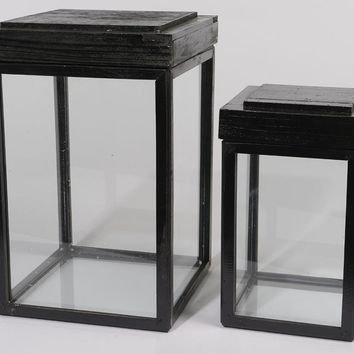 Set of 2 Botanic Beauty Lidded Black Fir Wood Display Boxes 16.5""