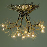 Roots ,Handmade ceiling light made from putter wires.