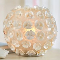 Glowing Shell Orb