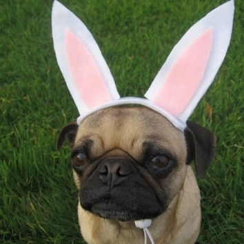 EASTER BUNNY dog or cat hat fits all sizes