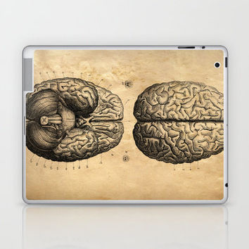 Vintage Anatomy. Brains poster. Human Body. Laptop & iPad Skin by Curious Prints