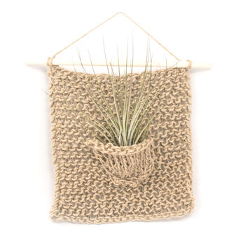 Single Air Plant Hanger