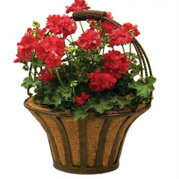 SheilaShrubs.com: Solera Metal Basket with Coco Liner BA206 by Deer Park Ironworks: Planters