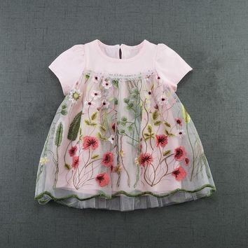 Baby Dress Infant girl dresses flowers Embroidery Baby Girls Clothes Princess Birthday Dress for Baby Girl 2color 0-2T