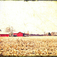 Country Red Barn 8x10 Photograph