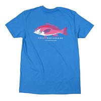 Snapper Short Sleeve T-Shirt in Nautical Blue by Collared Greens