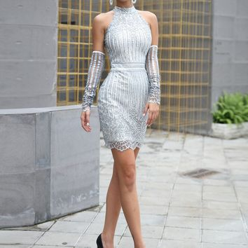 Zip Back Sequin Bodycon Silver Grey Dress
