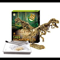Dino Fossil Science Educational Toy