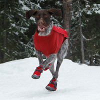 Bark'n Boots Winter Boot for Dogs