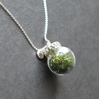 green Real Marimo moss necklace, glass orb necklace with initial,  garden necklace, Real plants Necklace, Wish Necklace, botanical jewelry