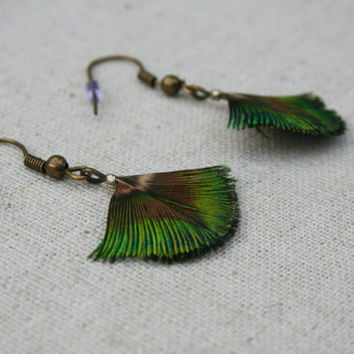 Small green iridescent peacock feather bronze earrings