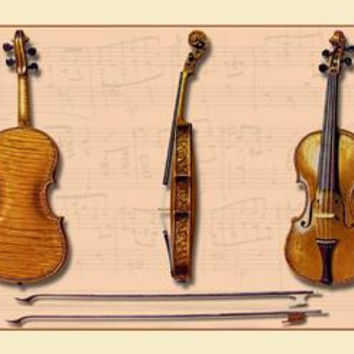 The Hellier Stradivarius and Two Old Bows 20x30 poster