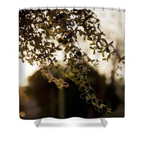 Silhouette backlight Shower Curtain for Sale by Ivy Ho
