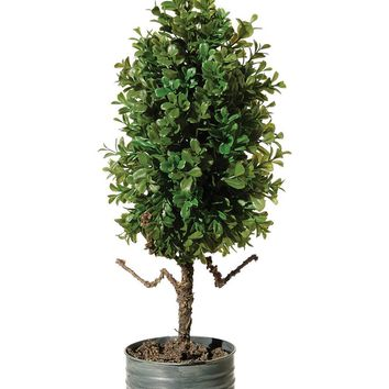 "Artificial Potted Boxwood Plant - 23"" Tall"