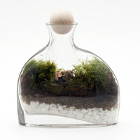 Punk Rock Terrarium