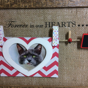 Pet sympathy frame, A4 Pet memorial peg photo board, pet loss gift, in loving memory, pet tag display, Rainbow Bridge frame, peg photo board