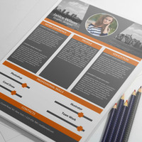 MS Word Professional Resume Template
