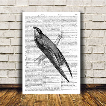 Bird art Swallow poster Modern decor Dictionary print RTA143