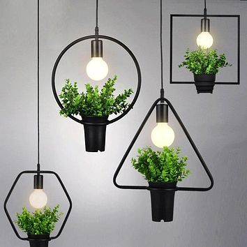 Modern Pendant Ceiling Lights And Plant Pot