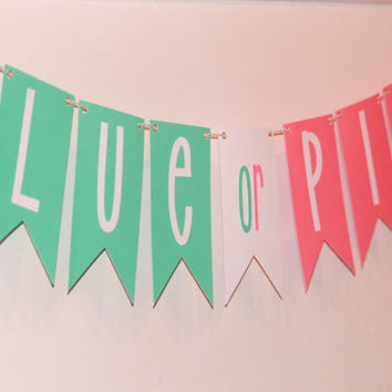 Gender Reveal Banner, blue or pink, gender reveal party, decorations