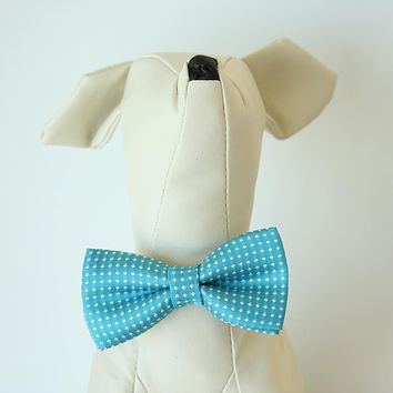 Aquarius Blue Polka dots bow, Small bow tie collar, Puppy Collar, Cat collar, Cat bow tie collar, Leather, Handmade, Cat bow, XS Collar