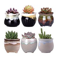 WITUSE small planters cactus planter mothers day succulent pots, mothers day gift small cactus pot small succulent pots, glazed ceramic plants pot - 6pcs