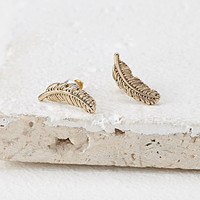 Etched Feather Studs