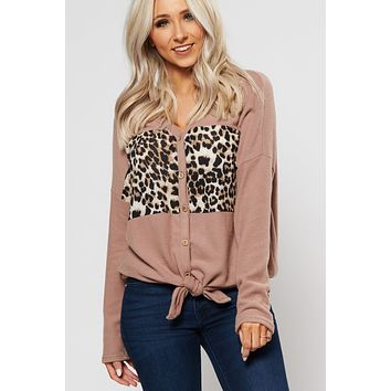 Meow About It Color Block Top (Brown)