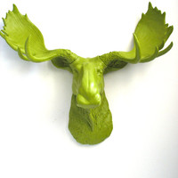 Faux Taxidermy Moose Head Wall Hanging Wall Mount Home Decor: Max the Moose in chartreuse