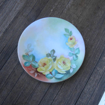 2 Handpainted Rose Plates - Floral Garden Party Plates - Handpainted Pink Rose Plates - Pale Yellow Rose Bavarian Tea Party Plates