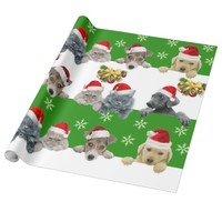 Glossy Wrapping Paper cat and dog